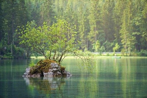 Järvivesi