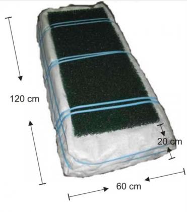 Raita biomoduuli